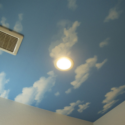 脱衣所の天井なぜか空模様