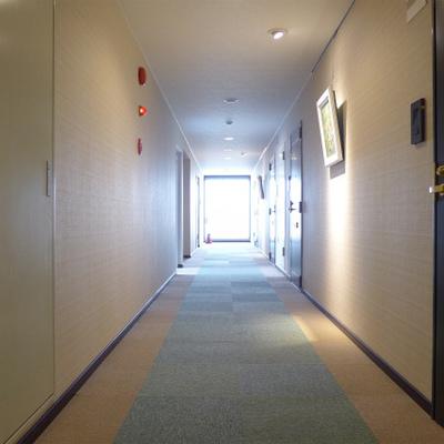 共用部の廊下は明るく綺麗! ※写真は前回募集時のものです。