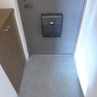 玄関には小さめですがシューズボックスありますよ!