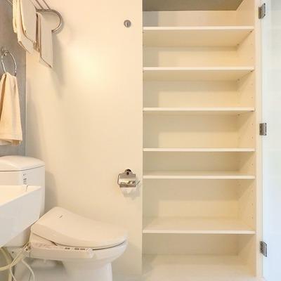 トイレの横には収納が。タオルとかはここに入れたら使うときに便利!
