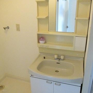 洗面台は大きめです。使いやすそう!