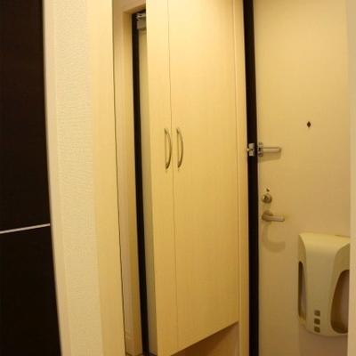 玄関の靴箱の鏡はとても便利です