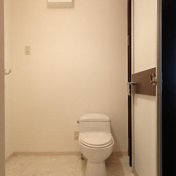 脱衣所にはトイレ、洗面台が一緒になっています