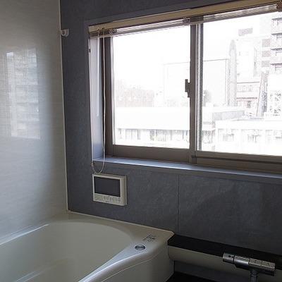 ミストサウナつきの浴室