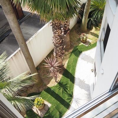 窓の外からもフェニックスがみえます。※前回募集時の写真です