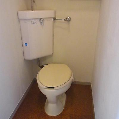 トイレの棚も大きめ。