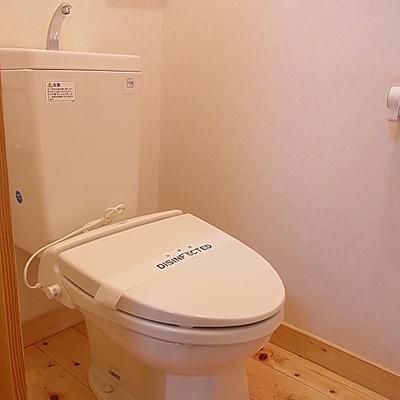 トイレもフローリング。