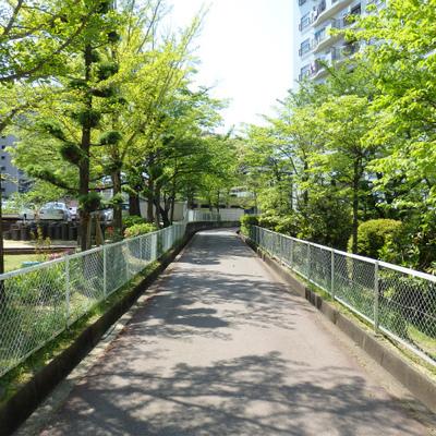 桃山台からはこの緑道を行きます