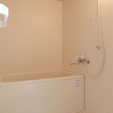 お風呂はノーマル※写真は別部屋