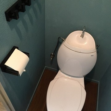 見た事もない形状のトイレです!!