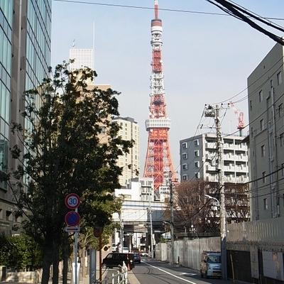 東京タワー結構大きく見えます。(写真は別室)