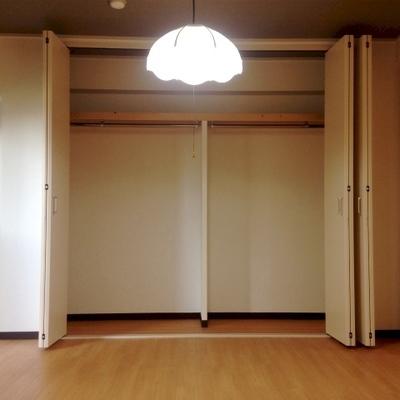 収納はこちらのみ。でも、部屋が広いので問題無いですね。