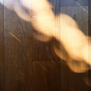 経年変化で味のある無垢床と木漏れ日
