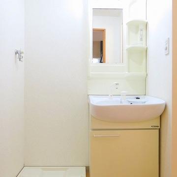 収納たっぷりの洗面台は何かと便利そう