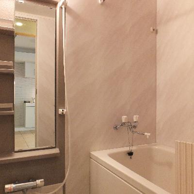 お風呂のデザインは古めですが綺麗です!