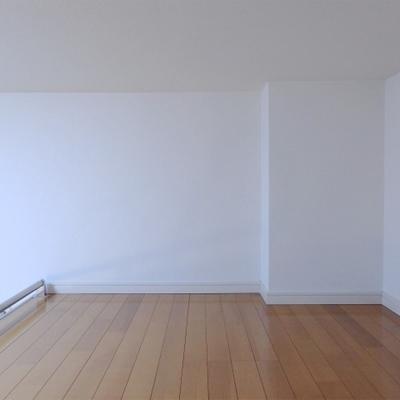 2.6帖ほどの広さ。寝室か、それとも収納か。