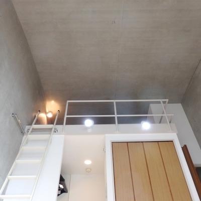 天井が高い!!