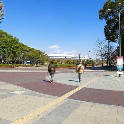 サッカースタジアムがある長居公園!広いぞー!!