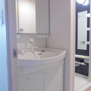 洗髪洗面化粧台も白くてきれい
