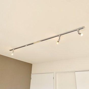 天井のライティングレールには可愛らしいスポットライトが3つほどついていました。
