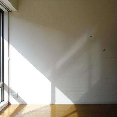 1階ですが南向きなので光が入ります