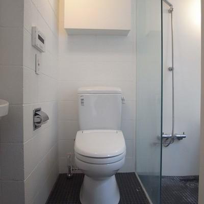 少し丸みを帯びたシンプルなトイレ※写真は別部屋です