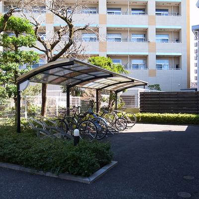 駐輪場です、広々していますね!バイクも相談可ですよ。 ※写真は前回募集時のものです。