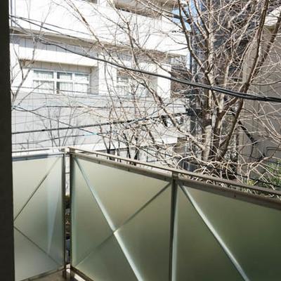 ベランダ。視界は開けませんが桜の木があり、広さもOK。