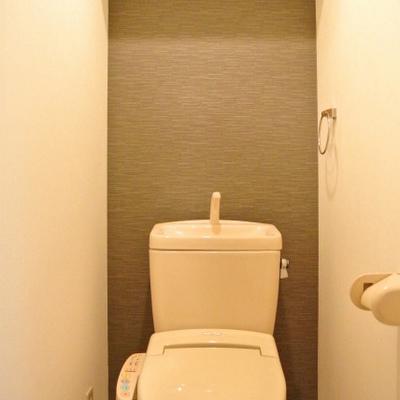 トイレのクロス。いい色味。