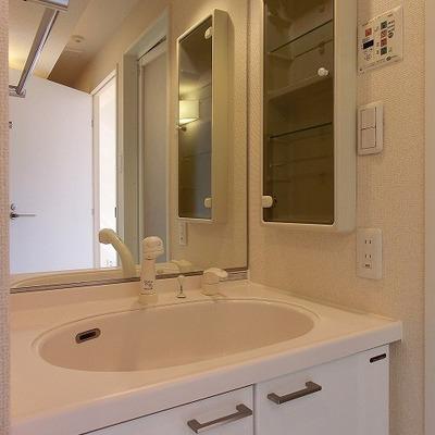 シャワーノズルのある洗面台!※画像は別室です