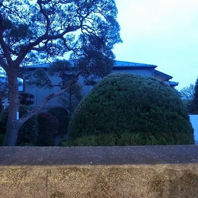 隣家の緑が見えます!※写真は前回募集時のものです。