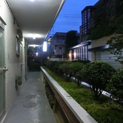緑のある共有廊下。※写真は前回募集時のものです。