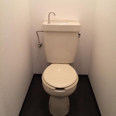 トイレはふつう・・・