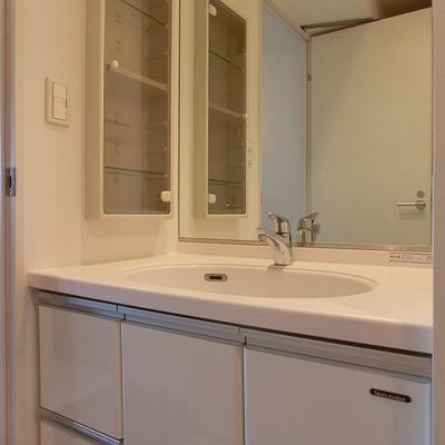 大きな鏡に収納たっぷりの洗面台