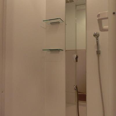 浴槽はなく、シャワールーム。