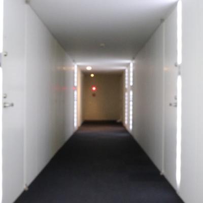 まるで宇宙船のような廊下。