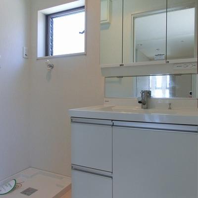 三面鏡に洗濯パンのある脱衣所。