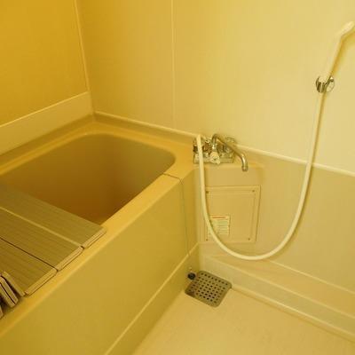 お風呂は普通ですね ※写真は前回募集時のものです。