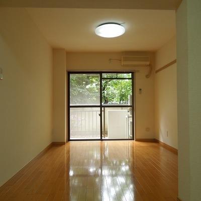 緑の感じられるお部屋です ※写真は前回募集時のものです。