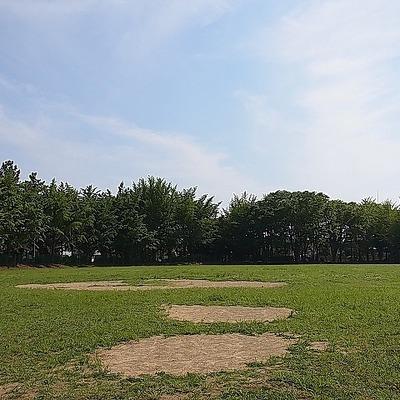 近くにこんな素敵な公園が!