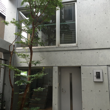 102号室のエントランス、立派な木