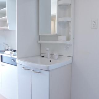 洗面台はキッチンの隣です。
