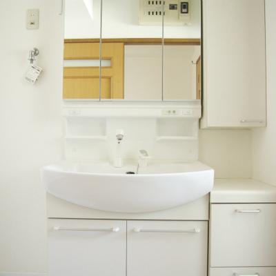 洗面台などは新品感もあり