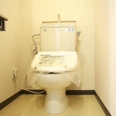 トイレの新品ですね