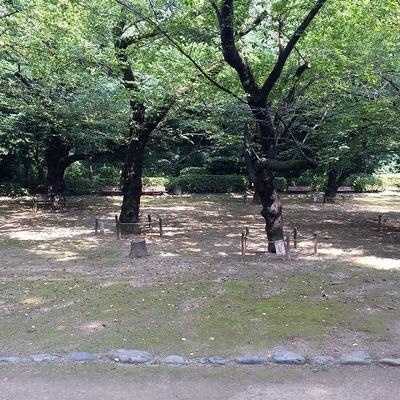 哲学堂公園