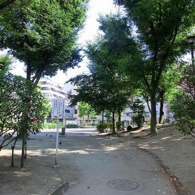 付近には緑豊かな公園もあります