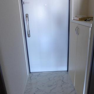 玄関も白。シューズボックスあります。