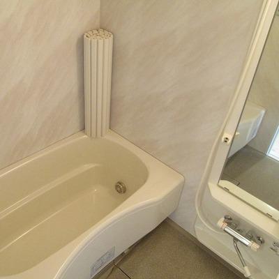浴槽は十分の大きさです。