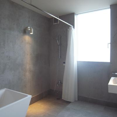 もう一度このお風呂。ん〜やっぱり素敵!(写真別室)