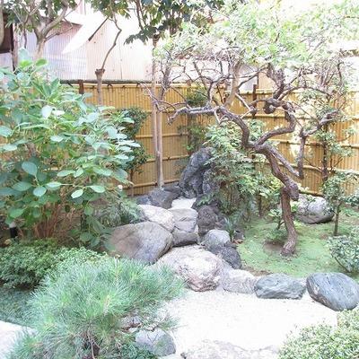 エントランスに小さい庭園があります。